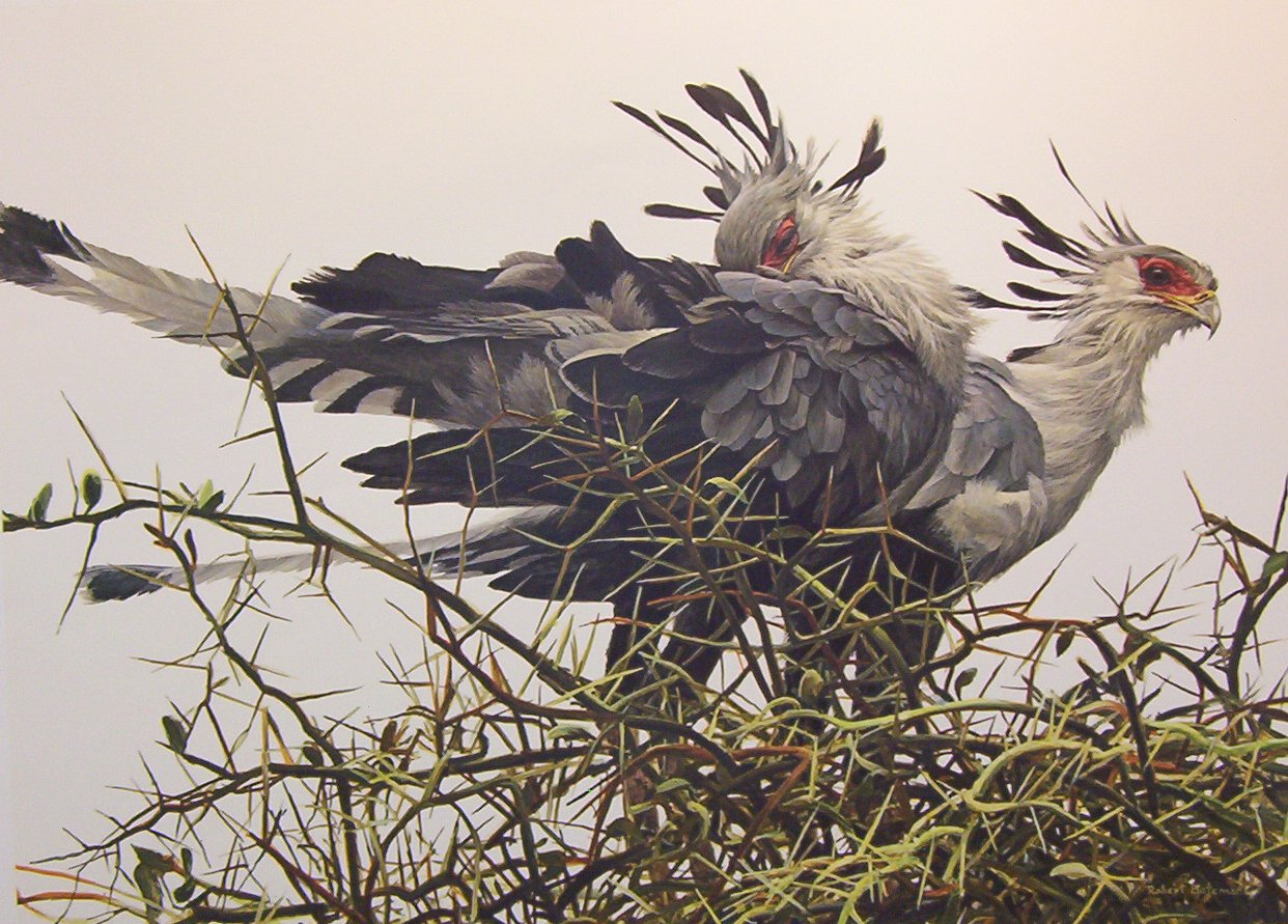 Artwork by Robert Bateman